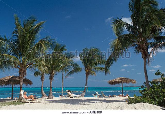 Bahamas New Providence Nassau Cable Beach palms - Stock Image
