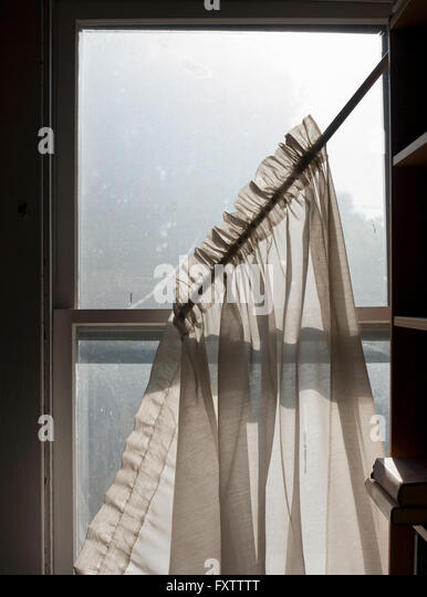 Net curtains falling from dirty sash window - Stock Image
