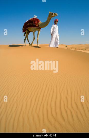 Sand Dunes, Arabian Desert, Dubai, United Arab Emirates - Stock Image
