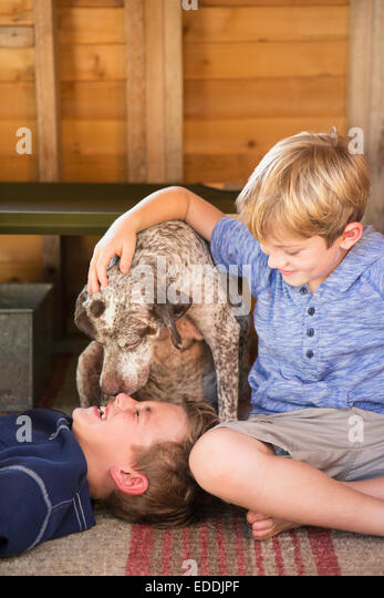 Two brothers playing with their dog. - Stock Image