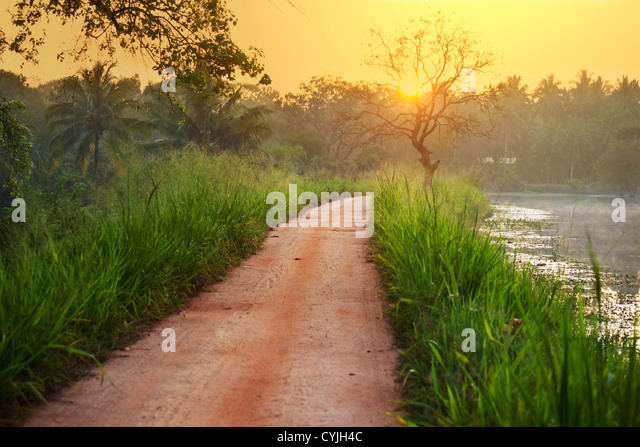 tropical river - Stock-Bilder