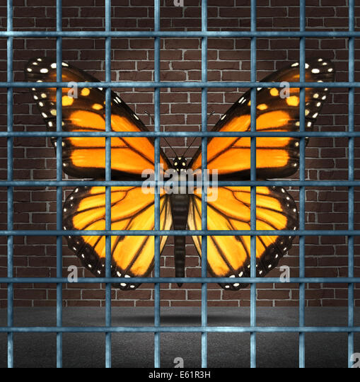 Trapped creativity and creative limitations business concept as a monarch butterfly behind prison bars as a symbol - Stock Image