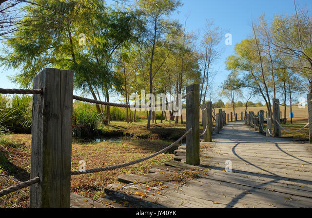 Walking trail made of wood in Blount Cultural Park, Montgomery Alabama, USA. This part is made of wood and crosses - Stock Image