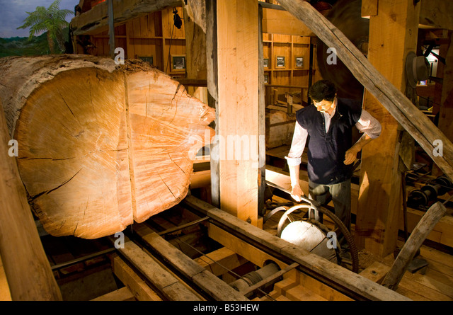Reproduction of a logging workshop at the Matakohe Kauri Museum, North Island, New Zealand - Stock Image
