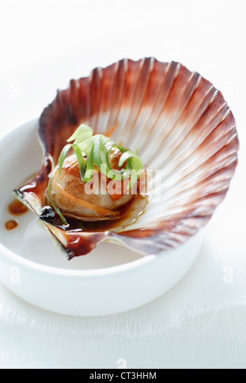 Close up of food served in shell - Stock Image