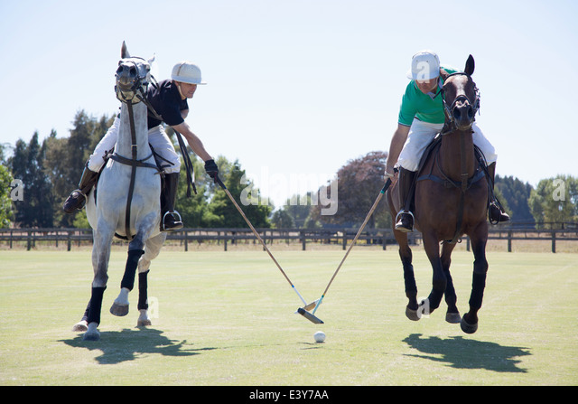 Two adult men playing polo - Stock Image