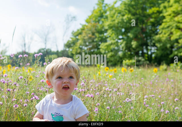 Boy sitting in a meadow, Michigan, America, USA - Stock Image