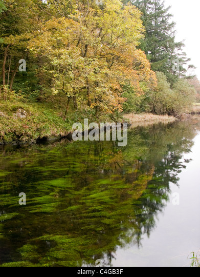 Stretch of River Brathay near Elterwater - Stock Image