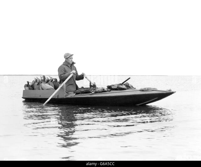 1950s MAN DUCK HUNTER ROWING DUCK BOAT DECOYS ON REAR DECK AND KILLED DUCKS ON FRONT BARNEGAT BAY NJ USA - Stock Image