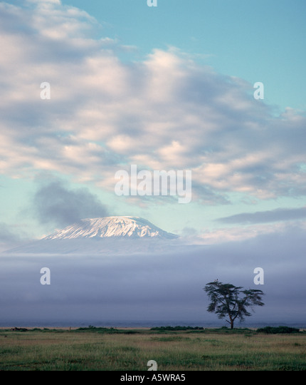 The snow capped peak of Mount Kilimanjaro at dawn from Amboseli Lodge, Amboseli National Park, Kenya, East Africa - Stock Image