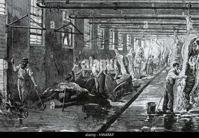 CHICAGO SLAUGHTER HOUSE about 1892 - Stock-Bilder