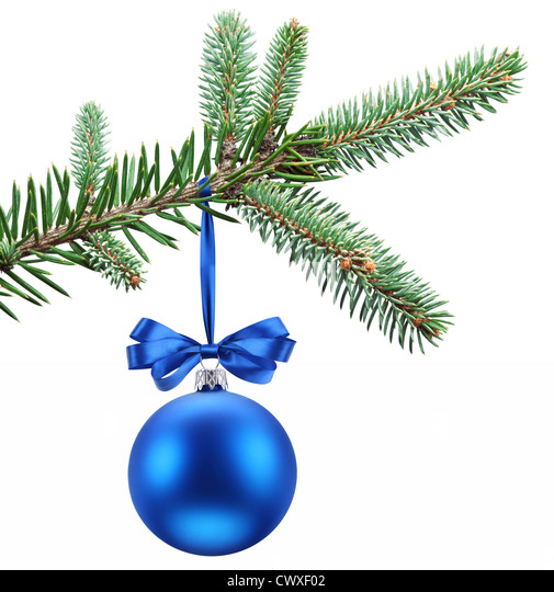 Christmas ball on fir branches. Isolated on white. - Stock Image