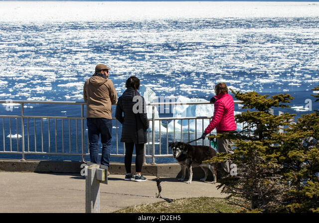 People at scenic overlook - Crow Head, Twillingate, Newfoundland, Canada - Stock Image