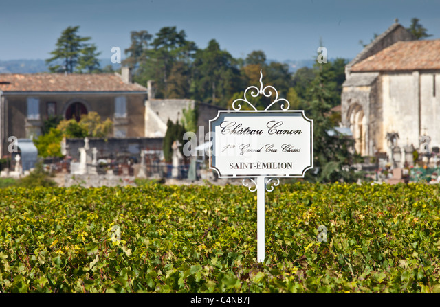 Vineyards at Chateau Canon 1er Grand Cru Classe, St Emilion in the Bordeaux wine region of France - Stock Image