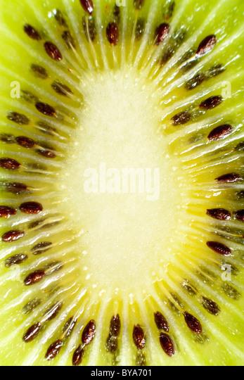 Kiwi Macro Detail - Stock Image