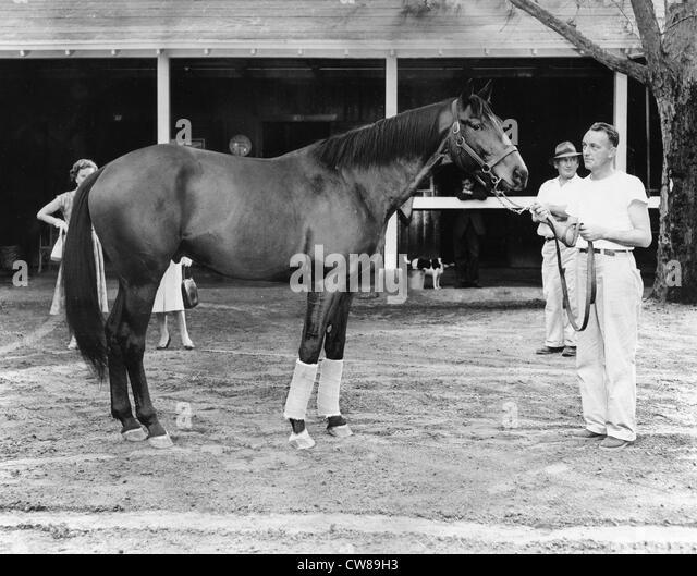 Nashua, Hialeah Racetrack, Florida,1957 - Stock Image