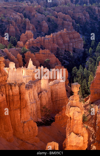 Sunrise at Bryce Canyon National Park - Stock Image