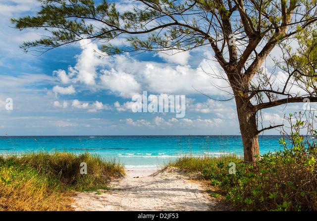 Bahamas, Eleuthera Island, Club Med Beach - Stock Image