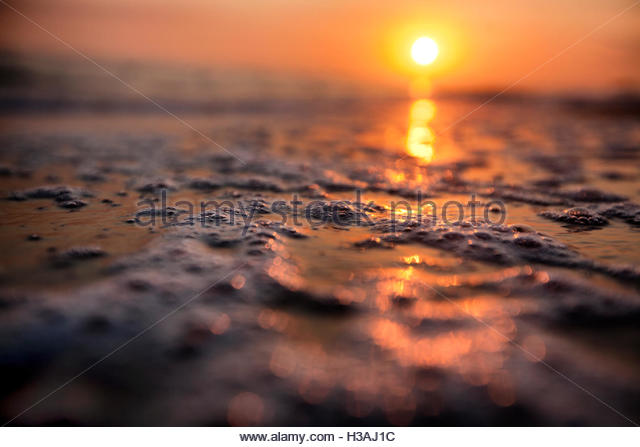 sunset on the beach shot low on the ground - Stock Image