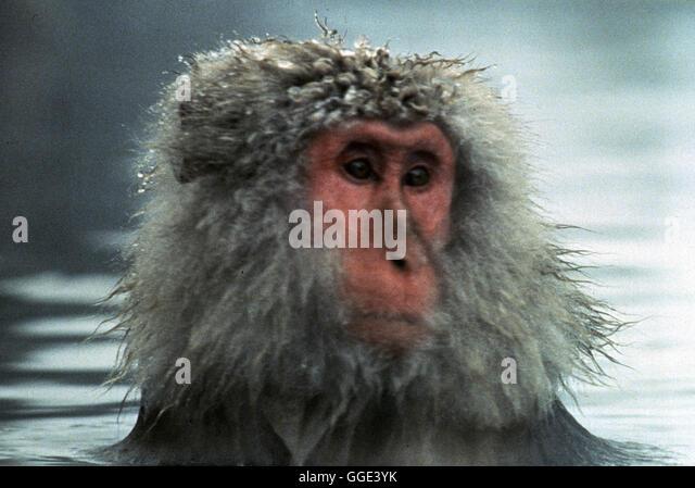 ACK48081.jpg BARAKA / Film-Dokumentation USA 1992 / Ron Fricke Eine Reise-Dokumentaiton zu den Naturschönheiten, - Stock-Bilder