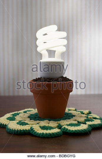 low energy light bulb in flowerpot - Stock Image
