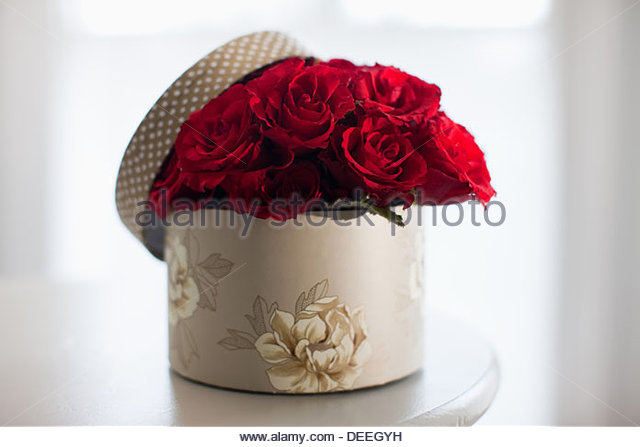 Red rose bouquet in gift box - Stock Image