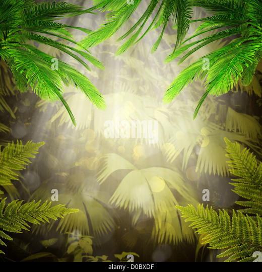 Early morning in the tropical forest. Abstract natural backgrounds - Stock-Bilder