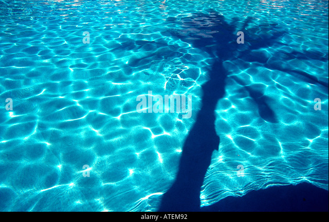 Reflection of a palm tree in a swimming pool Sharm el Sheikh Egyt Red Sea split level - Stock Image