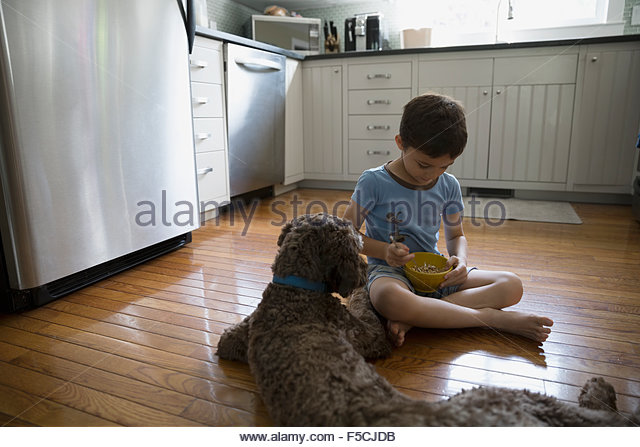 Dog watching boy eat cereal on kitchen floor - Stock-Bilder