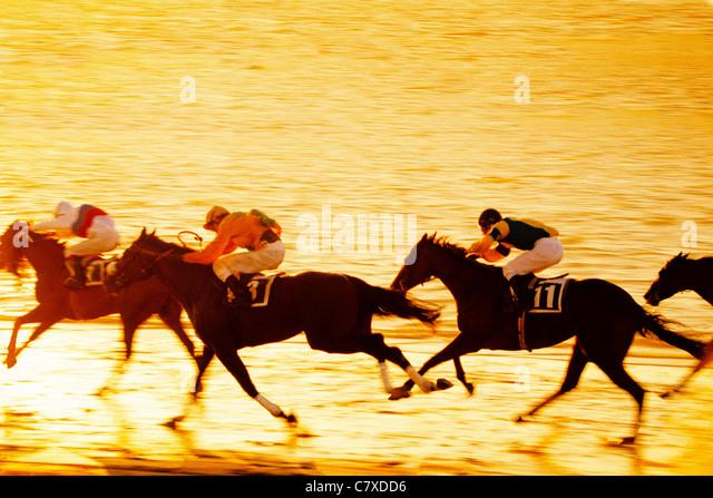 Horse Racing Spain Andalusia Cadiz Sanlucar Carrera de caballos Sanlucar Cádiz Andalucía España - Stock Image