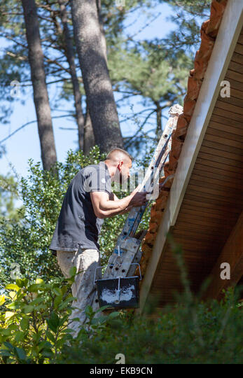 A self-employed house painter at work on eaves (France). Peintre en bâtiment oeuvrant sur l'avant-toit - Stock Image