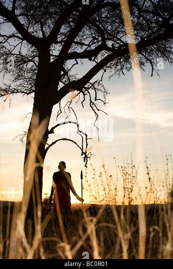 Maasai Warrior at Sunrise - Masai Mara National Reserve, Kenya - Stock Image
