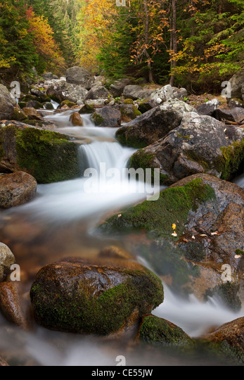 Rocky mountain stream through woodland, Tatra Mountains, Slovakia, Europe. Autumn (October) 2011. - Stock Image