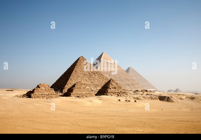 Camels approach the Giza pyramids. - Stock-Bilder