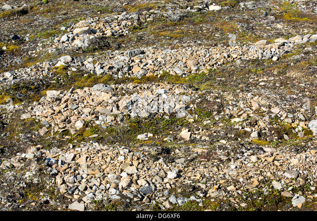 patterned ground formation Attributed initiation of patterned ground to earlier glacial periods  formation  primarily took place when landscapes had limited or broken vegetation cover and .