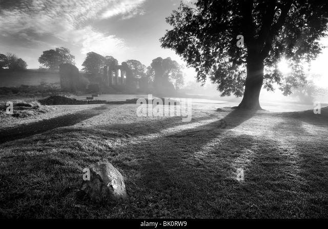 Inch Abbey, Downpatrick, Northern Ireland. - Stock Image