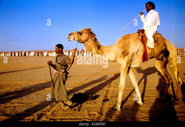 Riyadh Saudi Arabia Camel Racecourse - Stock Image