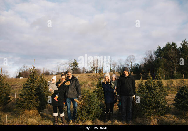 Parents and baby girls in Christmas tree farm, Cobourg, Ontario, Canada - Stock-Bilder