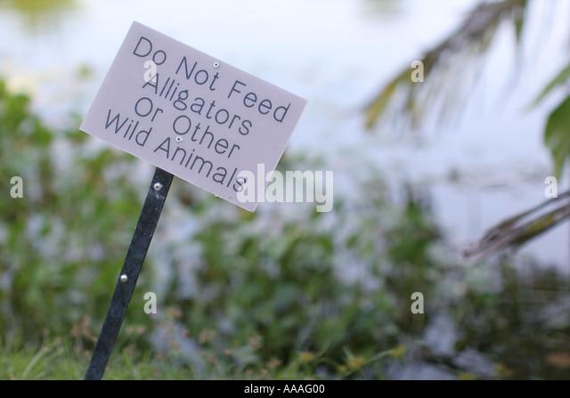Florida, sign, Do Not Feed Alligators or Wild Animals, - Stock Image