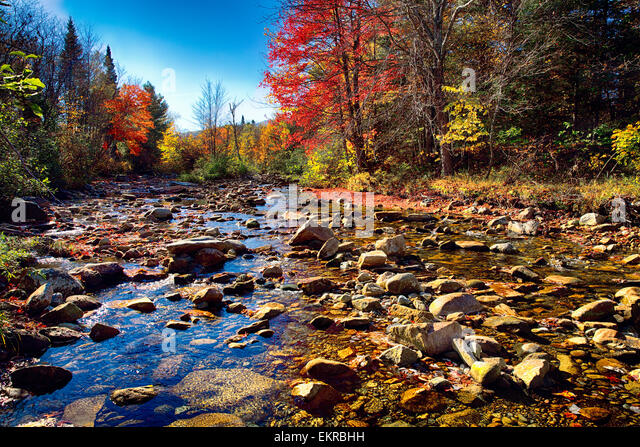 Low Angle View of a Rocky River Bed with Fall Foliage, Franconia, New Hampshire, USA - Stock Image