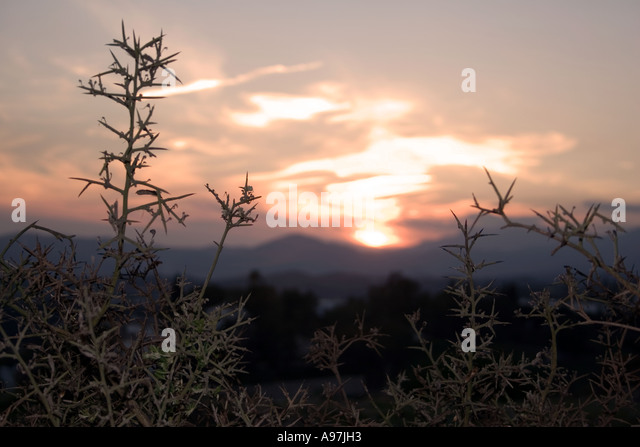 Sunset in hills above Fuengirola, Spain, nightfall, evening sunlight dusk Sierra Blanca country side countryside - Stock Image