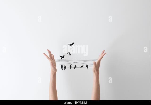 String hand game with birds perched on the string - Stock Image