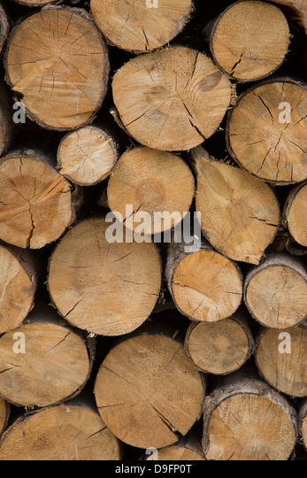 A log Pile in Canazei in the Dolomites, Italy - Stock Image