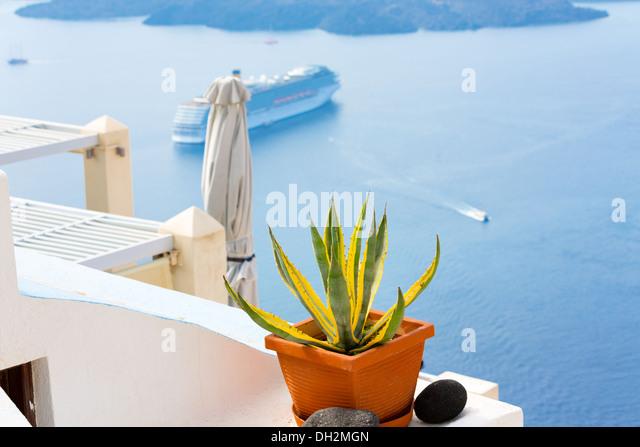 pot with plant island Santorini, Oia Greece - Stock Image