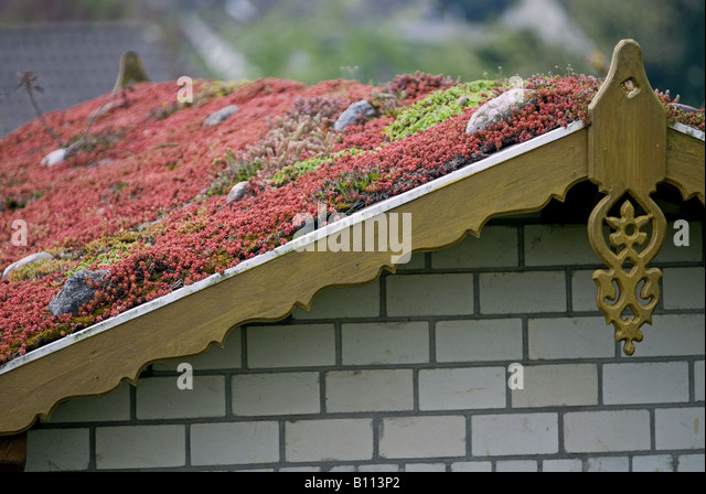 Greenroof Stock Photos Amp Greenroof Stock Images Alamy