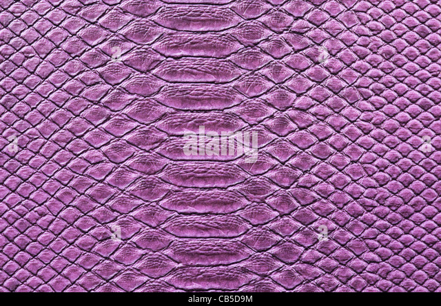 Detail of painted crocodile skin - Stock Image