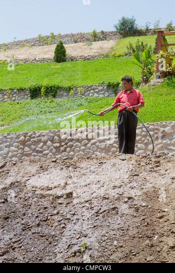 Peru Lima Barranco Bajada de los Banos neighborhood hillside terraced garden lawn Hispanic man hose water spraying - Stock Image