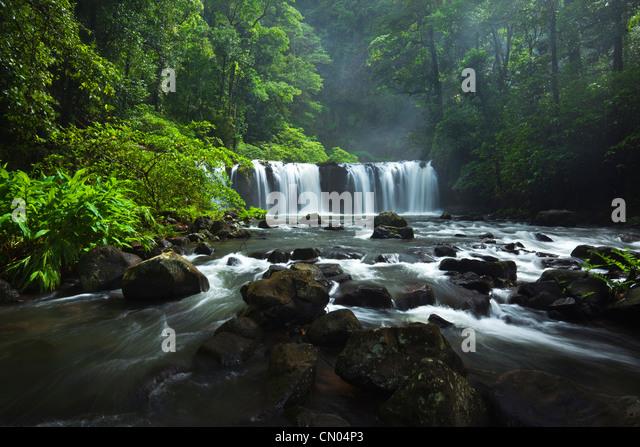 Nandroya Falls in Wooroonooran National Park.  Atherton Tablelands, Innisfail, Queensland, Australia - Stock-Bilder