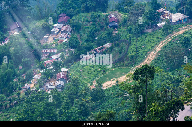 Idyllic Mountain village of North Bengal Himalayas, India beside a tea garden with copy space - Stock Image