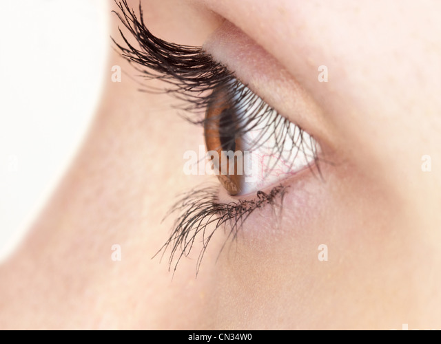 Brown eye - Stock Image